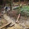 Afan Forest Mountain Bike Trail Centre