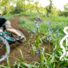 Hemlockstone MTB Trails