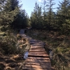 Gisburn Forest Bike Trails