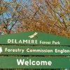 Delamere Forest Mountain Bike Trails