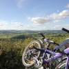 Mountain biking  or cycling along the Millennium cycle path
