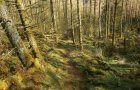 Secret trails abound in Wales