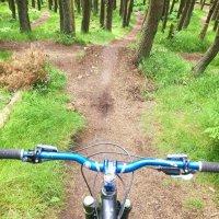 Bonaly Downhill and Mountain Bike Trails