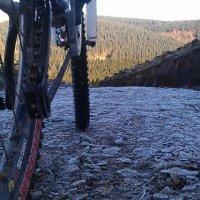 Coed Trallwm Mountain Bike Centre, Wales