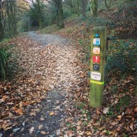 Afan Forest Mountain Bike Trail Centre, Wales