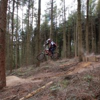 Silton Forest DH Track