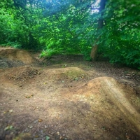Baddesley Trails