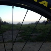 Epping Forest Mountain Biking