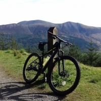Whinlatter Forest Park Mountain Bike Trail Centre