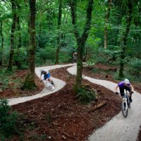 PlymBridge Woods Mountain Biking