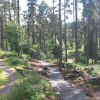 Callendar Estate Mountain Bike Trails and Greenrig Bike Park