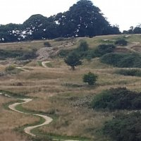 Hadleigh Park Mountain Bike Trail Centre