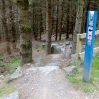 Glentress/Innerleithen natural route DPS download