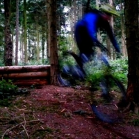 Wakerley Woods Mountain Biking
