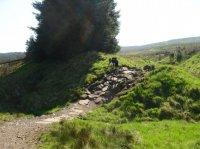Carron Valley Mountain Bike Trails
