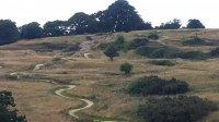 Hadleigh Park Mountain Bike Trail Centre