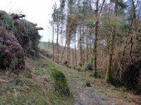 Penmachno Mountain Bike Trails