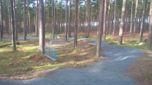 Thetford Forest Launch a Revamped Pump Track