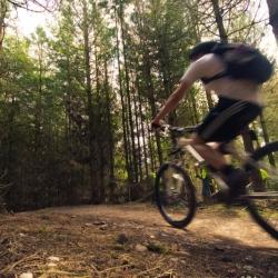 Cannock Chase Mountain Bike Centre