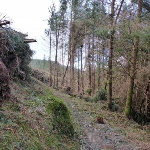 Penmachno Mountain Bike Trails